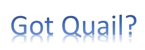 Got Quail?